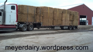 Load of straw is ready to unload.